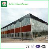 Estufa do vidro de flutuador com alta qualidade e preço econômico