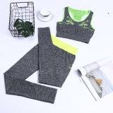 OEM дешево женской спортивной одежды фитнес-Set дамы йога, Yjf10301017