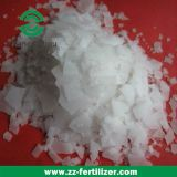 Perle della soda caustica di alta qualità con controllo dello SGS (NaOH 99%)