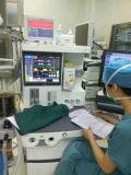 Machine van de Anesthesie van de Klasse van de V.S.S6100plus de Hoogste voor de Kinderen van de Volwassenen van de Pasgeborene