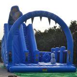Trasparenza di acqua gonfiabile di divertimento degli adulti giganti