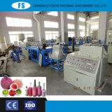 Hersteller-Qualitätsmaschine der Plastik-PET Schaumgummi-Frucht-Netz-Extruder-Maschine