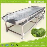 FT-1800 Máquina de desidratação de vibração vegetais / Transportador de secador de Spin