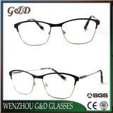 Het recentste Nieuwe Optische Frame van het Oogglas van Eyewear van het Metaal van de Stijl Model