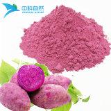 Extrait de l'ingrédient en poudre chinois du violet de la Patate douce