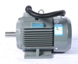 Hohes Efficiency Electric Motor mit Cer für Compressors Only