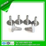 Schrauben-Fabrik-Erzeugnis-spezielle runde flache Hauptschraube für Dach