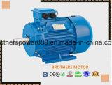 Elektromotor Wechselstrom-Y2 (Y2, YE2, YE3, ANP) Anp Mptor