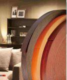 Nouveau design décoratif pour la table du Cabinet de chants en PVC