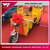 Elevadores eléctricos de 48V800W 400kg de capacidade de embarque de passageiros movidos de triciclo