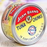Le thon en conserve du poisson avec prix d'usine