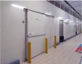 Il Ce ha approvato 12 tonnellate di camminata in congelatore per memoria della carne e dei pesci