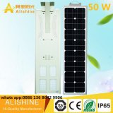 1개의 태양 거리 LED 빛에서 공장 공급 고품질 50W 전부