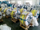 verbinden van Roestvrij staal 304 316 Gebruikt voor Industrie van de Slangen van Polen van Tekens