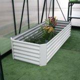 Novo Estilo de aço galvanizado revestido a pó levantado Jardim Cama para Flor de vegetais da borda da plantadeira (RDSG2008045-WO)