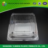 Recipiente di plastica a gettare libero con il coperchio, contenitore di imballaggio della frutta