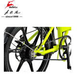 Задний 250 Вт Бесщеточный двигатель из алюминиевого сплава с электроприводом складывания велосипедов