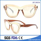 Große und transparente Rahmen-Sonnenbrillen mit freiem Objektiv