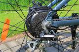 리튬 건전지 전기 산악 자전거