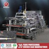Grande ferme avicole de l'équipement d'équipement agricole cages à oiseaux de la machine