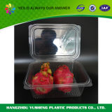 Устранимый Clamshell плодоовощ, коробки еды Clamshell