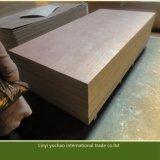 Muebles de grado Bintangor madera contrachapada decorativa con pegamento E1
