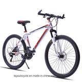 Cheap Price Adult Road Bike (MTB-3)