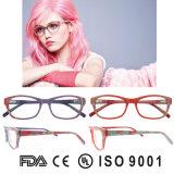 Eyewear ottico incornicia i blocchi per grafici degli occhiali nessun blocchi per grafici di Eyewear di marca