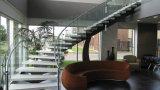 Escaleras de cristal curvadas modernas/diseño helicoidal de la escalera/pasamano de cristal curvado