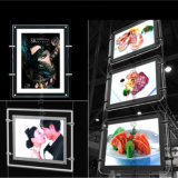 Decorativo Janela Display Pendurado Slim Crystal LED Light Box