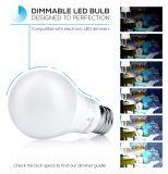 A60 6W/8W/10W/12W Bombilla LED E27 conductores térmicos plásticos y Cuerpo Alumunum