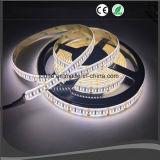 iluminación de tira de 12V SMD 3014 LED