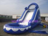 膨脹可能なPVC防水シートのイルカの子供プールが付いている膨脹可能な水スライド