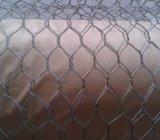 Hexgaonalの金網かスタッコの網