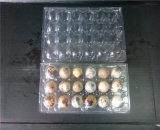 18 trous carreaux à oeufs à caille en plastique avec 40um Clear Pet