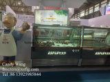 Showcase do gelado/congeladores italianos do gelado de Gelati Gelato (CE aprovado)