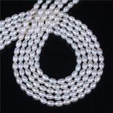 5mm 6mm AAAの米の形の真珠の繊維