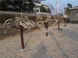 Apparatuur van de Speelplaats van jonge geitjes de Plastic Openlucht (YL75302)