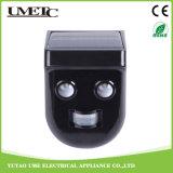 Indicatore luminoso solare del sensore della parete LED del giardino di plastica del corpo con la batteria dello Li-ione