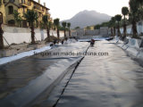 Black Underground Engineering Waterproof HDPE Geomembrane Film