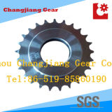 DIN ANSI-Norm Bored Getriebe Spur Kettenritzel-Getriebe