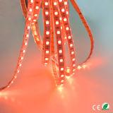 50m SMD5050 ETL barre lumineuse à LED pour la décoration d'accueil