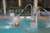Het binnen Spuiten van het Gordijn van het Water van de Pool van /Swimming van de Decoratie