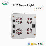 Indoor Plants를 위한 크리 말 Chips와 가진 2018 베스트셀러 LED Grow Light