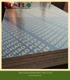 La pellicola calda di vendita ha affrontato il compensato da Linyi Cina per costruzione