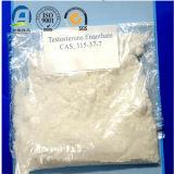 El polvo estándar 100% de Enanthate de la testosterona del fabricante del GMP pasa con seguridad aduanas