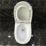 Kom van het Toilet van de badkamers de Ééndelige Ceramische