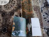 Tissu de jacquard de tissu de sofa de polyester de fournisseur de la Chine