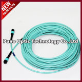 12 Cores MTP - MTP Multimodo OM3 Aqua Trunk Cable