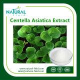 CentellaのAsiaticaエキス10%-95% Asiaticosideの粉/Asiaticosides